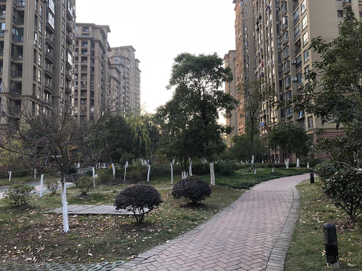 清水湾别墅图片